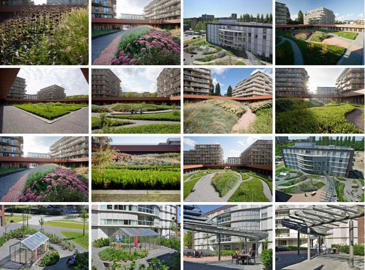 荷兰zonnehuis养老院花园景观设计